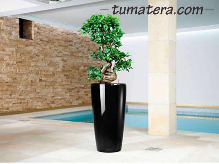 La sofisticación de sus formas combinadas con la diversidad de colores disponible es ideal para decorar tus espacios. Encuentralas en:  http://www.tumatera.co/products/matera-inteligente-24-mi-4075rondo/