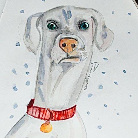 Der kleine Lukas hat immer so einen schrägen Blick drauf, er wirkt immer so überrascht, das kleine (eigentlich sehr große) Glückshündchen. Aquarellzeichnung auf Papier. #watercolor #aquarellzeichnung #skizzenbuch #sketchbook #sketching #skizzen #zeichnen