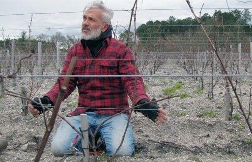 Marco Simonit farà da consulente del leggendario Château d'Yquem a Bordeaux. Scelto per il suo metodo rivoluzionario: «Per me è un sogno che si avvera»