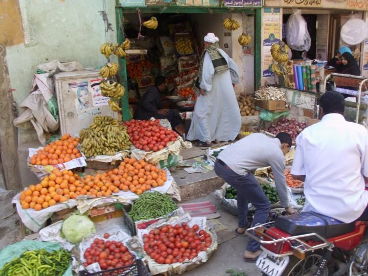 Travel With Somebody - Egypt Market