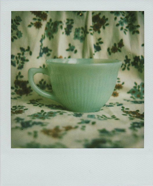 teacup By a Bevy of