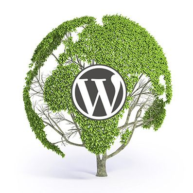 WordPress takes over the web. In 2013, 20.1% of websites powered by WordPress.