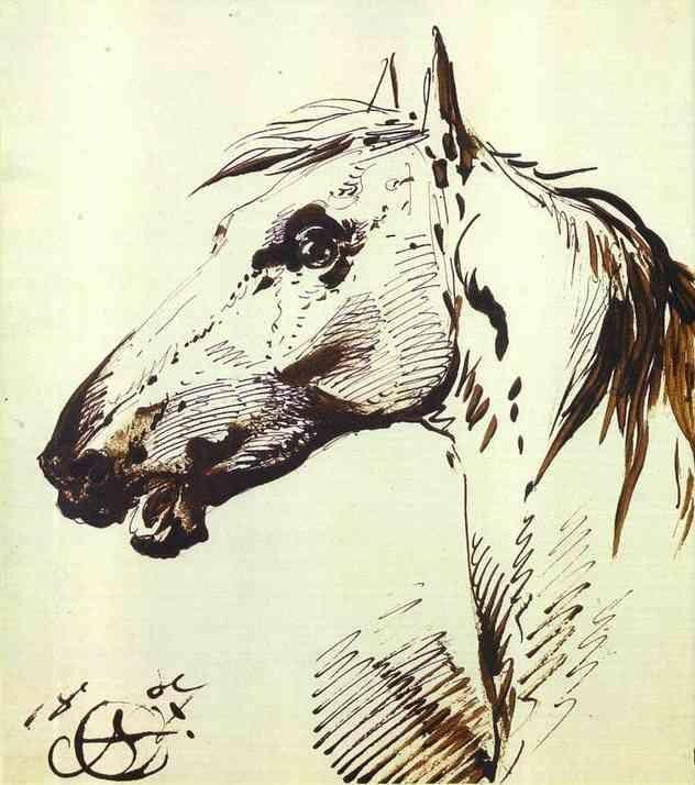 Delacroix slickwhippet: Photo