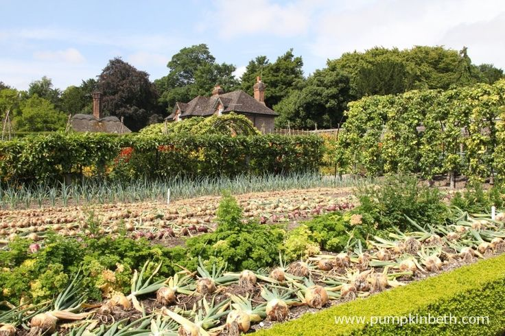 West Dean Gardens, Chichester in West Sussex has a truly inspiring  and beautiful vegetable garden.  They also have meadows and flower borders, this garden is a lovely place for bees and butterflies as well as visitors.