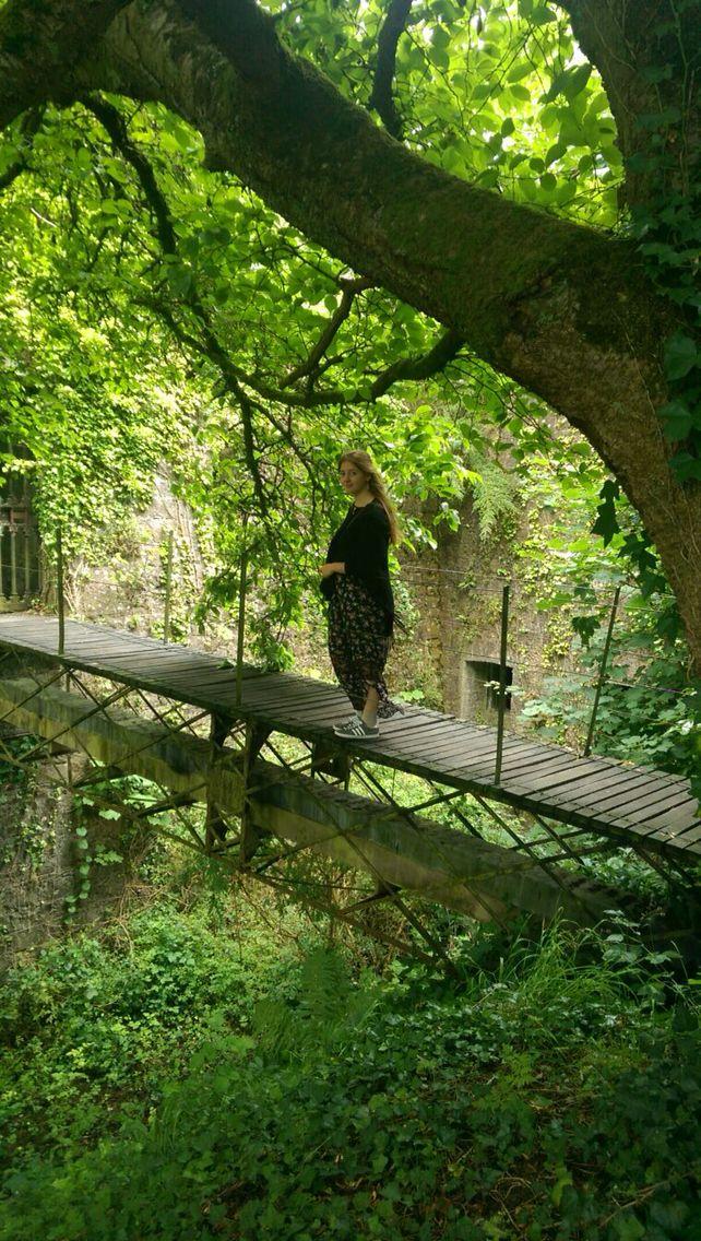 A small bridge, Birr Castle, Athlone