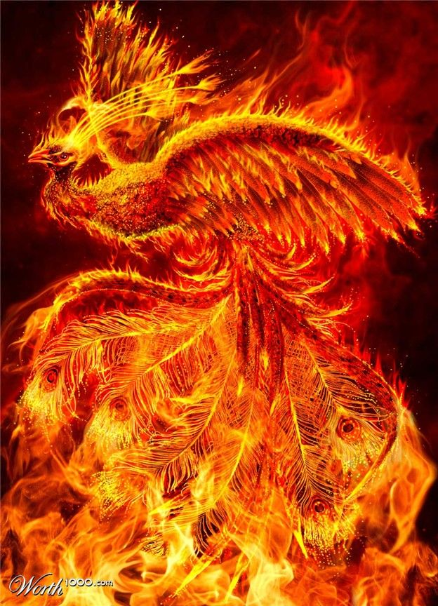 by Bajazet - zane is a phoenix rising from the ashes                                                                                                                                                     Plus