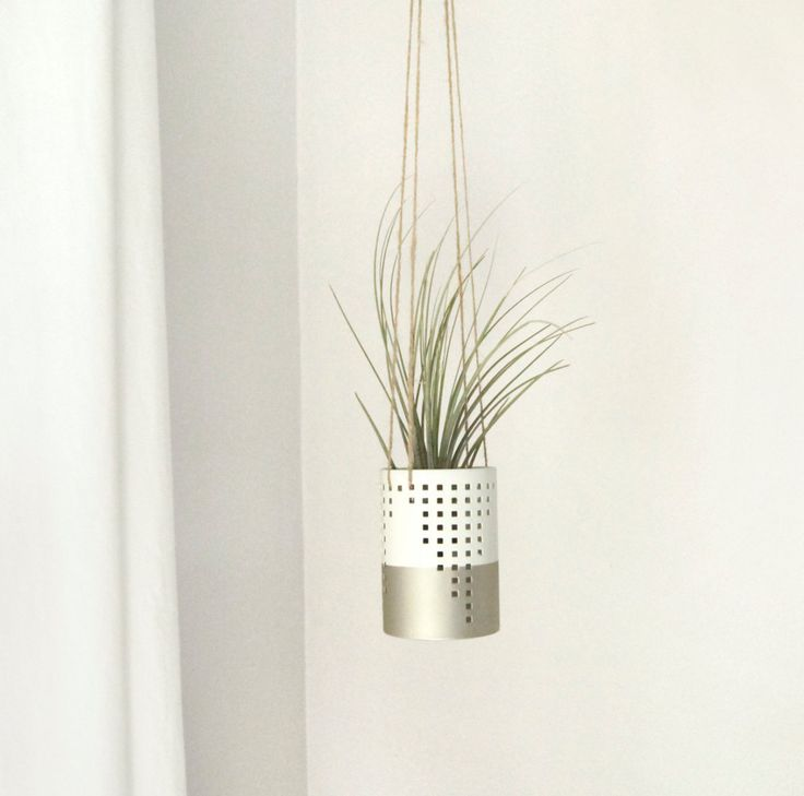Multifunction Air Plant Pod or Hanging Candle Holder in Gold & White by ClassicByNature on Etsy