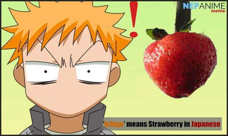 'Ichigo' means Strawberry in Japanese. #nepanimeshare #memes