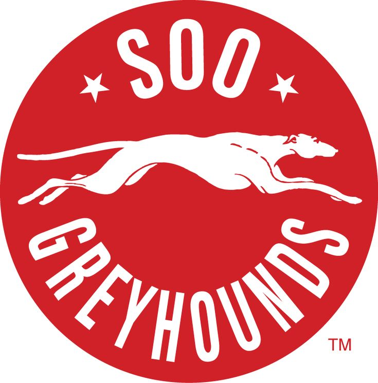 Sault Ste. Marie Greyhounds Primary Logo (2014) -