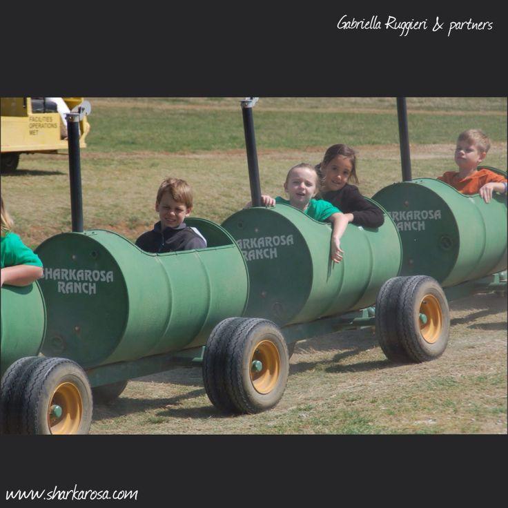 Use hashtag #saturdayrecycling for #greenideas!  They could inspire someone!  #recycled #oilbarrel #steeldrum #oildrum #green #design #designer #reclaimed #repurposed #barreltrain #sharkarosa #wildlife #ranch #Texas #PilotPoint  Ph. courtesy: Sharkarosa Wildlife Ranch in Pilot Point, TX  www.sharkarosa.com  #Gabriella #Ruggieri selection