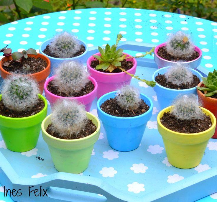 """Mini-Glücks-Kaktus Das sind meine kleinen Mini-Glücks-Kakteen, die ich regelmäßig vom """"Mutterkaktus"""" schneide und an liebe Freunde verschenke. Diesmal sind die Minis in bunt bemalte Tontöpfe gekommen und sehen eigentlich alle zusammen erst richtig gut aus, aber auch einzeln können die eine wirklich gute Figur machen. http://inesfelix-kreativ.blogspot.com/2016/06/mini-glucks-kaktus.html"""