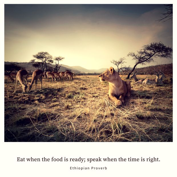 Eat when the food is ready; speak when the time is right. – Ethiopian Proverb