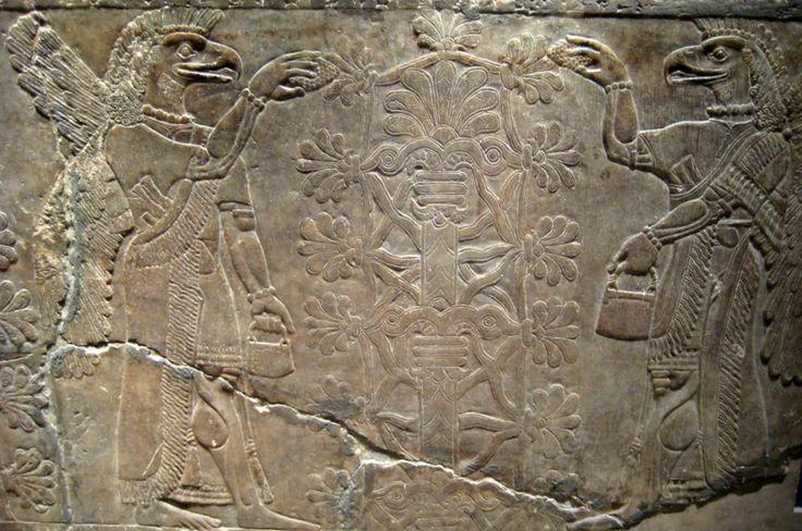 Basofelief din Sala I a Palatului de nord-vest al lui Ashurnasirpal al II-lea (circa 883-859 î.e.n.), care prezintă două genii înaripate (personaje mitologice, jumătate oameni, jumătate animale, ce vegheau la porţile templelor şi palatelor, ca nişte paznici ai comorilor) care venerează Pomul Vieții.