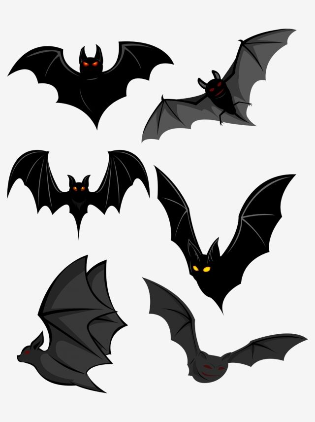 Halloween Bat Commercial Material Bat Clipart Halloween Bat Png Transparent Clipart Image And Psd File For Free Download In 2021 Halloween Bats Halloween Poster Graphic Design Background Templates