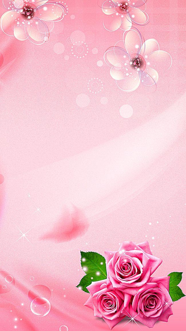 Rosa Blumen-Liebe blüht Hintergrund   – Hintergrundbilder 2
