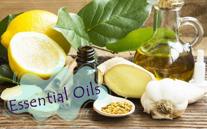 As you know, essential oils contain anti-inflammatory and anti-bacterial properties that are beneficial for curing tonsil stones.