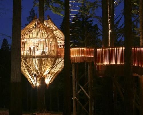 This is a tree house restaurant in New Zealand.  I'd love to go there.