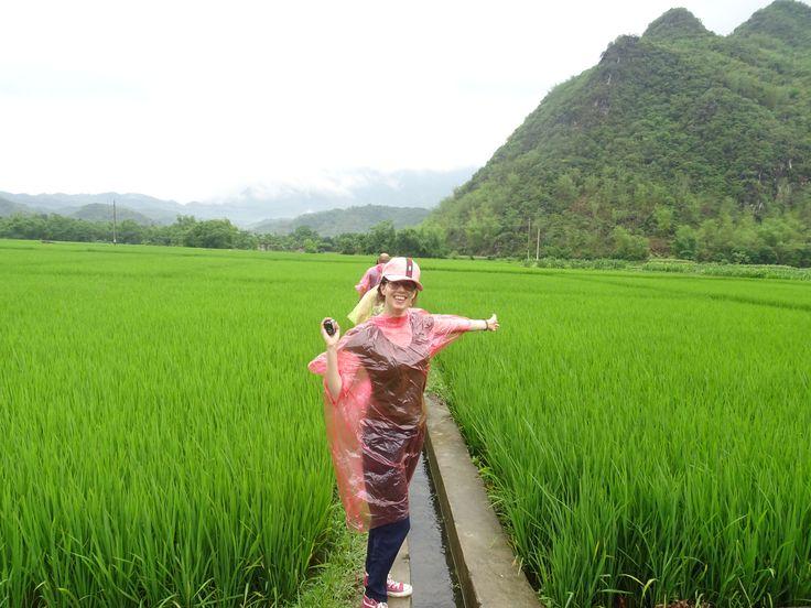 In de laatste blog over Vietnam schreef ik over de bizarre verkeersdrukte. Na genoten te hebben van de charme van het drukke maar mooie Hanoi, zijn we in de auto gestapt. Onze volgende stop:Mai Châu waar we de eerste rijstvelden van deze reis hebben gezien. Lees meer op www.addellen.nl