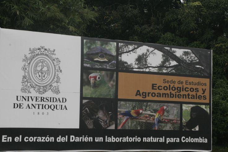 Entrada a la Nueva Sede de la Universidad de Antioquia: SEDE DE ESTUDIOS ECOLÓGICOS Y AGROAMBIENTALES