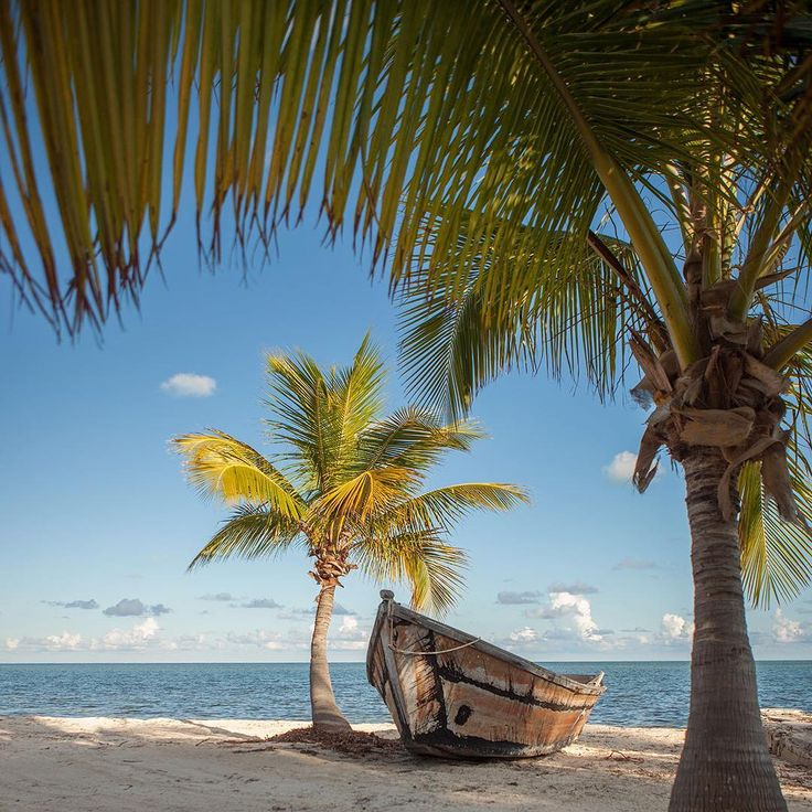 Photo by @hellokrisdavidson // Perhaps the first day of spring warrants a summer scene, a promise of warm and sunny days to come. Here is a weathered boat surrounded by requisite palm trees at The Moorings Village in Islamorada in the Florida Keys. The vernal equinox, the moment the sun crosses the celestial equator south to north, takes place today (Sunday, March 20th at 12:30 a.m. EDT). #spring #Florida