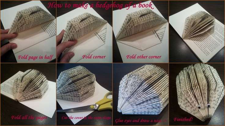 How To Make A Book Hedgehog : How to make a hedgehog of book een egel maken van