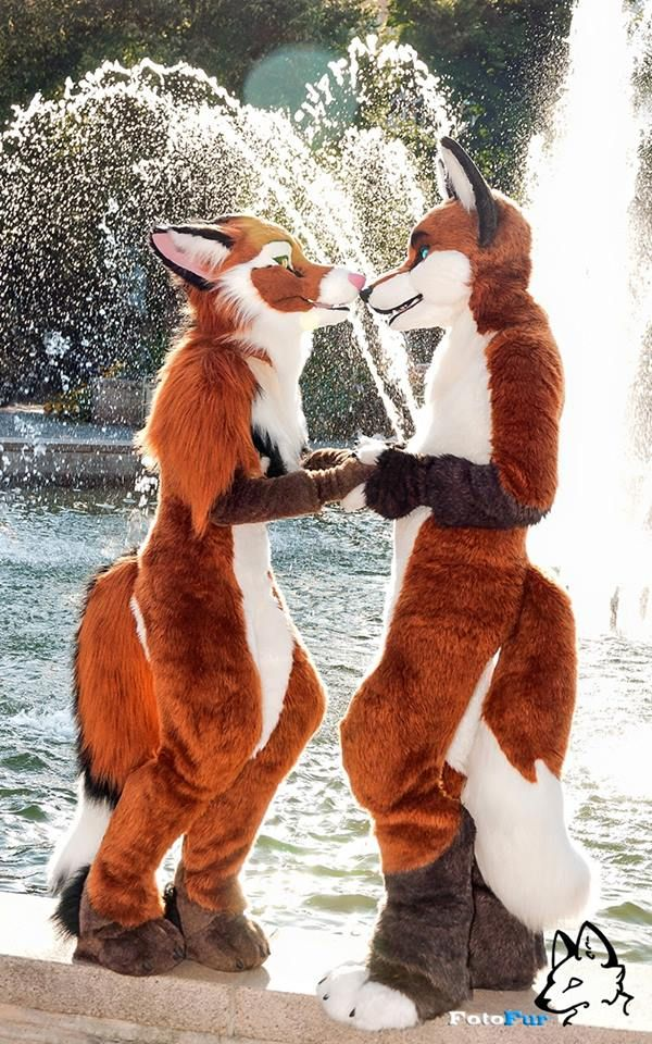 Photo by We Are Furries 2015 - This is just soooo adorable!!