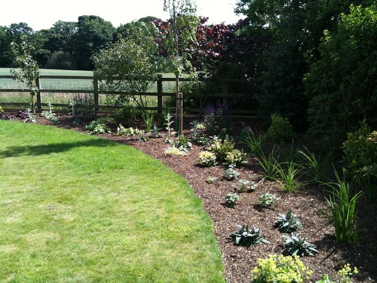 A previously overgrown narrow border widened, re-shaped & replanted.