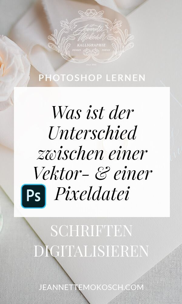 was ist der unterschied zwischen einer vektordatei und pixelgrafik rastergrafik jeannette mokosch photoshop lernen vektorgrafik grafik blume erstellen illustrator