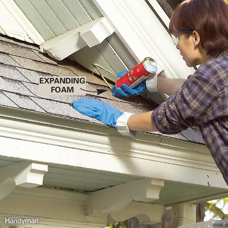 Pull nests from the soffit gaps and then fill these openings with expanding foam. After the foam hardens, cut off the excess with a utility knife.