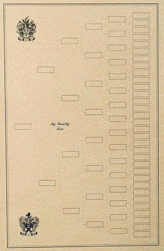 350 best Ancestry images on Pinterest Family tree chart, Family