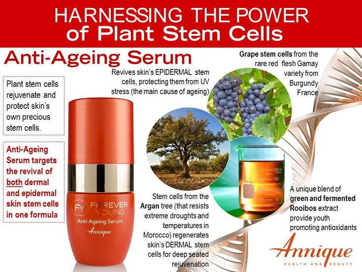 Plant stem cell technology is the new skin care breakthrough you have been waiting for. Grape and argan stem cells revive the skin's own stem cells for deep seated rejuvenation. #rooibos