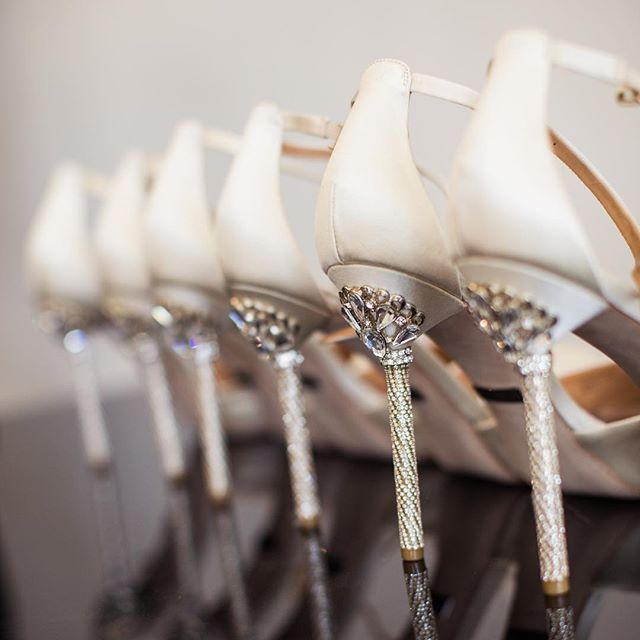 Shoe inspo! We absolutely love the detail in these @badgleymischka heels  #gmphotographics #weddinginspo #shoeinspo #professionalweddingphotographer #weddingphotographer #sydneyweddingphotographer #professionalweddingphotographer #masterphotographer #canonmasterphotographer #love #weddingshoes #heels #bridesmaids #bridalparty