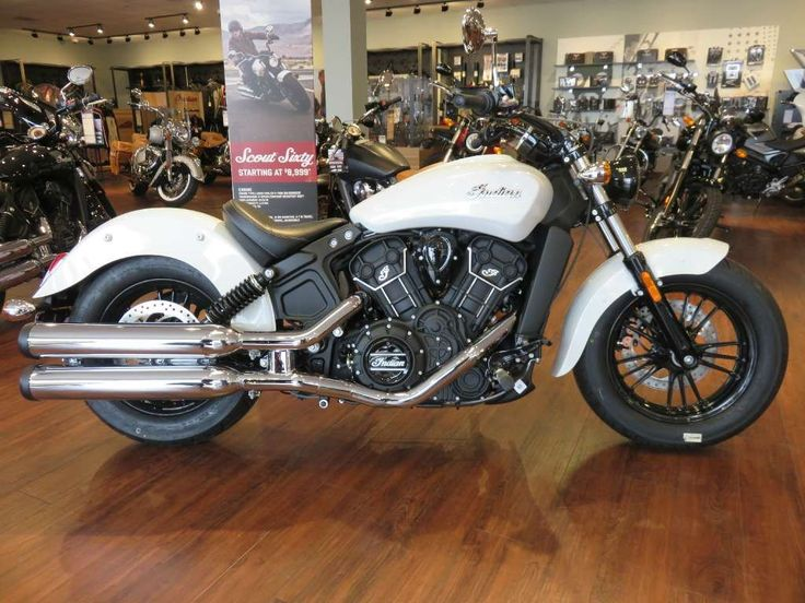 FOR SALE - 2016 Indian Scout® Sixty Pearl White. The legendary heritage of the Indian Scout is carried forward in the all new Scout Sixty. Expertly balanced and lightweight, Scout Sixty is the perfect motorcycle to start your legend. For more details, visit our website today. http://www.gothamsi.com/ #StatenIsland #GothamMotorcycles #NYCMotorcycleDealers #StatenIslandMotorcycleDealers #IndianMotorcycles