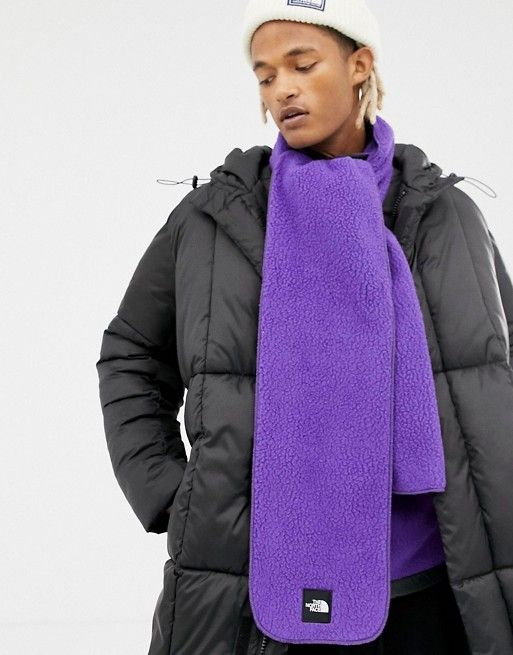 big sale b362b 781d0 The North Face Denali Fleece Scarf in Purple | asos men ...