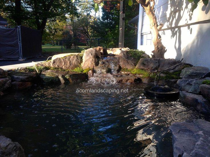 Fish Pond, Goldfish Pond, Koi Pond, Monroe County Rochester NY