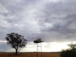 The Big Akubra - Cradock South Australia