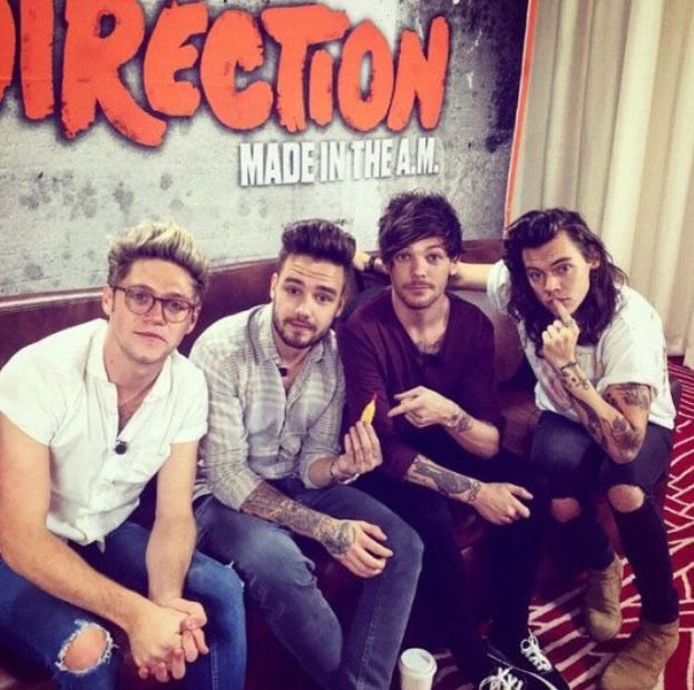Las Mejores Fotos de One Direction del 2015 - Aunque el año 2015 ha sido un año…