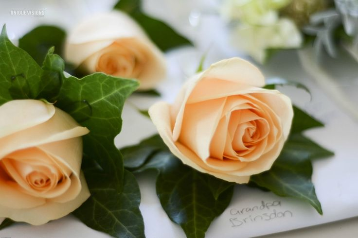 Apricot rose buttonholes by Willoughby Road Florist