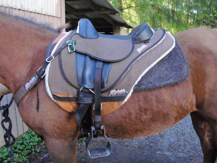 A treeless trail saddle for mounted archery (designed to help 2 point and stirrups move easily)
