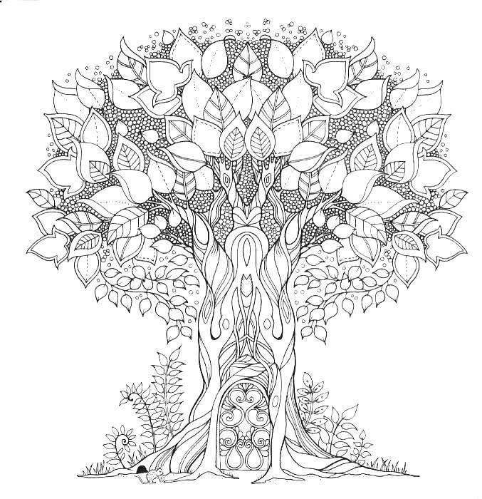 St Coloring Pages Forest Coloring Pages Forest Coloring Forest Coloring Pages Inspira Enchanted Forest Coloring Book Basford Coloring Book Forest Coloring Book