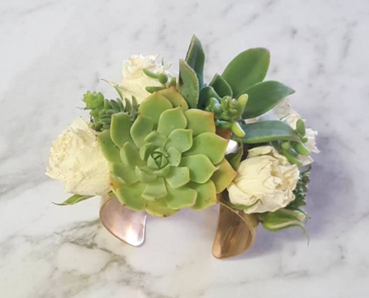 LIVING SUCCULENT CUFF   The perfect hens nigh and  bridesmaid gift, event statement piece, festivals, weddings and events.  Your living succulent crown can be worn for 3 to 5 days. You will notice your succulents will start to grow off the ribbon base and plant.