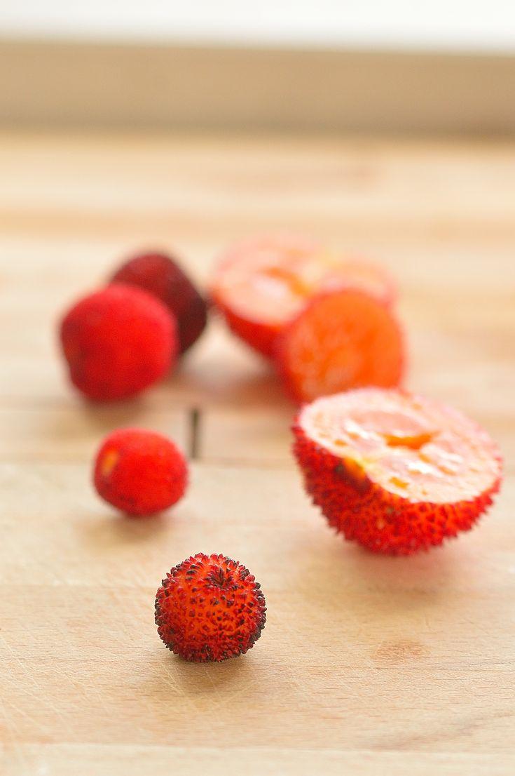 Medronho | Arbutus Berry | Mel's Vittles