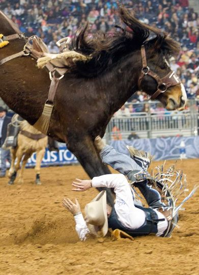 Follow our RodeoHouston coverage at Chron.com/rodeo.