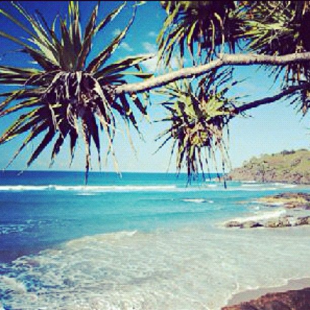 Surf's up and the sky is cloudless on this perfect Cabarita Day