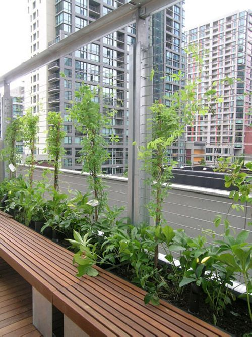 10 Best Images About Wire Trellis On Pinterest 2nd Floor