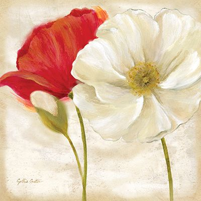 RB7003CC <br> Painted Poppies IV <br> 12x12