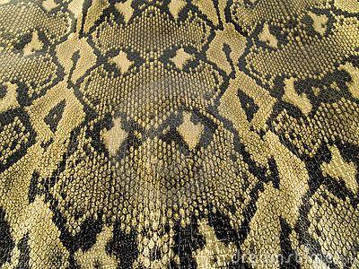 La piel de una serpiente es un tipo de textura natural pero a la vez podria denominarse como una textura organica natural porque simplemente fue creada por la naturaleza