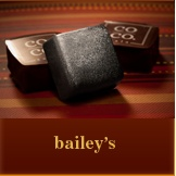 co co. sala bailey's artisanal chocolate