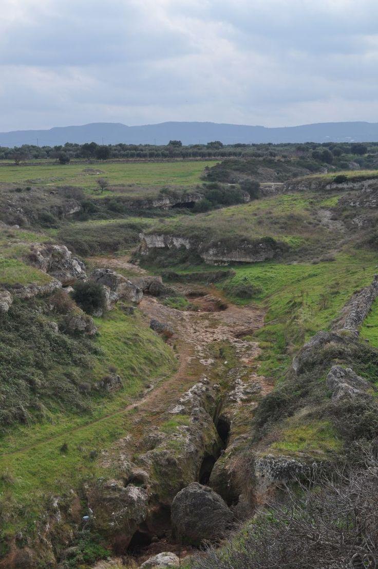 Lame and rock settlements - Parco Naturale Regionale da Torre Canne e Torre S. Leonardo. Ostuni, Puglia, Italy