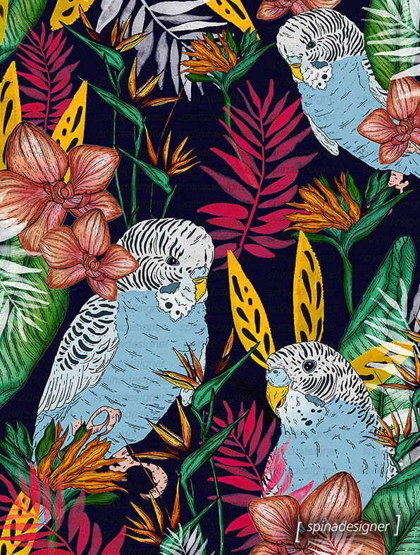 Walter Spina | Tropical Birds #print #pattern #illustration #art #urbanart